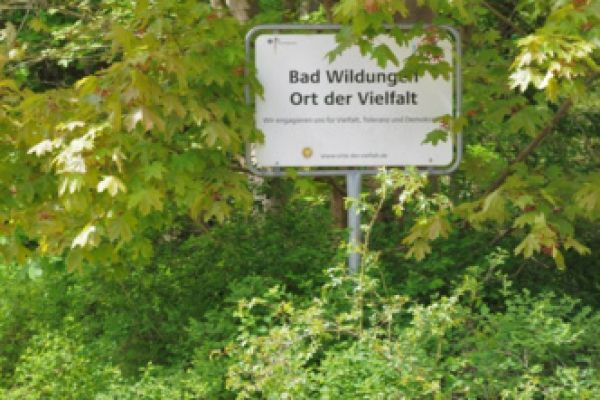 ff-bad-wildungen63FAA46840-9AC5-145A-103D-9AA7B8B66C57.jpg